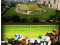Annual Ireland Trophy Horse Race and Arthur's Day at Happy Valley HK