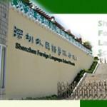 Shenzhen Foreign Languages School Branch