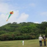 Grade 3 Flying Kites During QingMing Festival