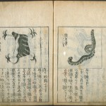 Collection of Old Chinese Books Bought by a Private Buyer During Auction