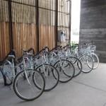 Shenzhen University to Offer Free Bike Rental to Students