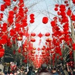 Local Expatriates Shares Plans on Celebrating the Spring Festival