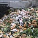 Local Enterprises Assigned to Handle Disposal of Kitchen Waste
