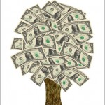Money Doesn't Grow on Trees, You Know