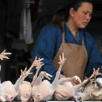 Shenzhen Sees an 80 Percent Decrease in Poultry Sales