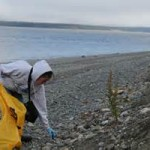 Volunteers Help in Cleaning Up of Garbage in the City's Coastline